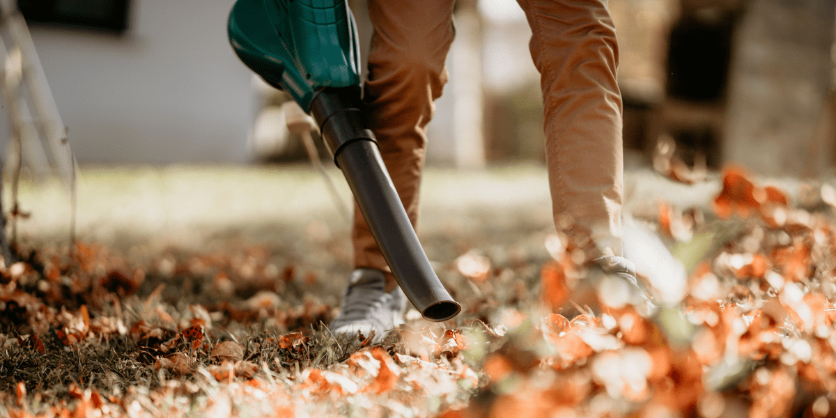 man using garden vacuum to clean garden from leaves