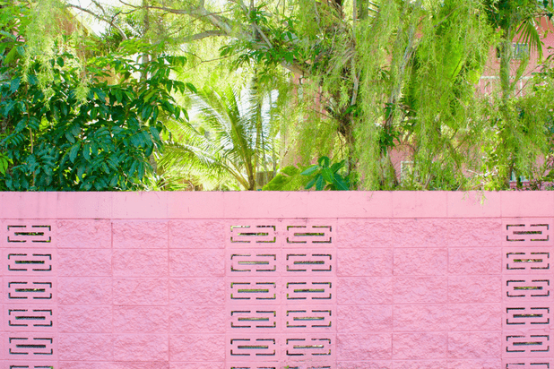 A pastel pink breeze block wall surrounded with green vegetation